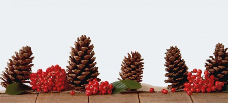 Jul og nytår med Covid 19
