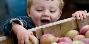 Børne-høstgudstjeneste